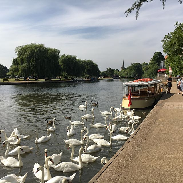 Fantastic Day in Stratford-upon-Avon going on a river cruise and great weather too my work's anniversary gift card with #virginexperiencedays I really enjoyed it